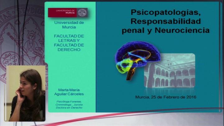 Seminario interdisciplinar sobre libertad, imputación, culpabilidad y neurociencias