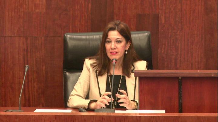 Primera Ponencia: Fomento de las sociedades laborales en la Región de Murcia