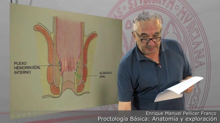 Proctología básica: Anatomía y exploración
