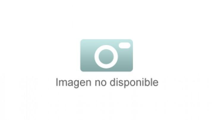 Congreso sobre Wikipedia