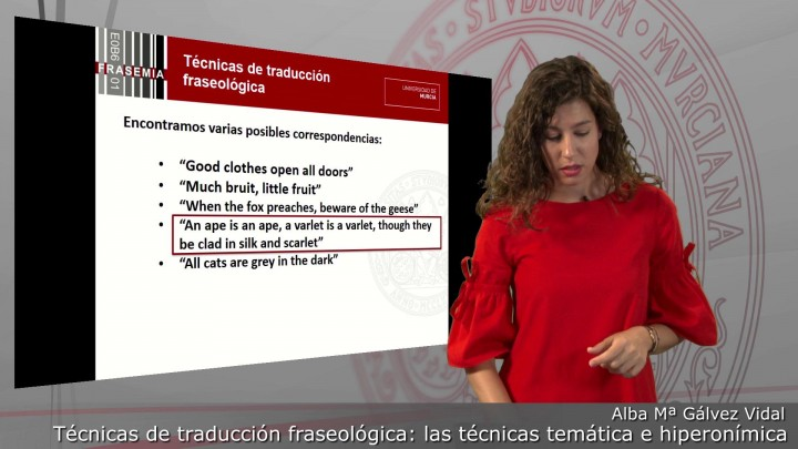 Técnicas de traducción fraseológica: la técnica temática y la técnica hiperonímica