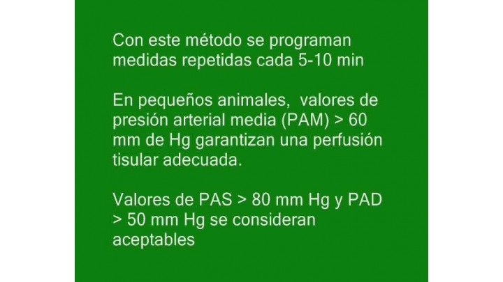 6.Monitorizacion cardiovascular