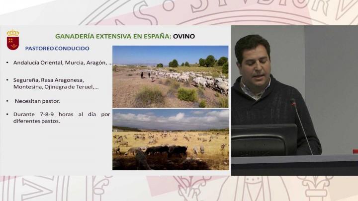 1-7. Ganadería Extensiva en Murcia