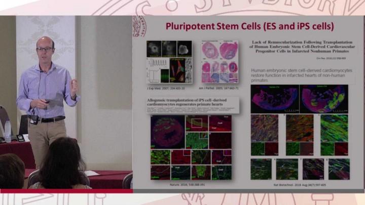 Terapia celular e ingeniería de tejidos en enfermedades cardíacas.