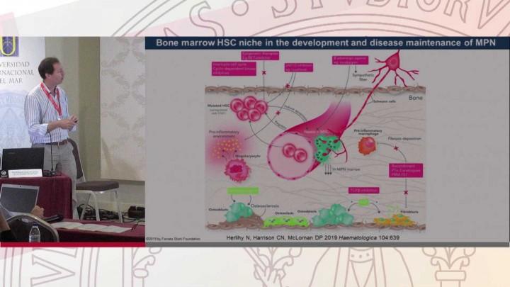 La regulación extrínseca de las células madre hematopoyéticas como diana terapéutica.