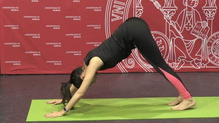 Clases de yoga: 2º sesión