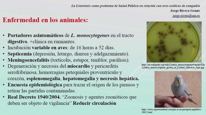 I JORNADA DE SOSTENIBILIDAD Y SALUD PÚBLICA. Mesa 1 Ponente y moderador D. Jorge Rivera Gomis