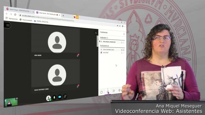 Asistentes. Ajustes de la sesión. Convertir en subtitulador. Eliminar usuarios.