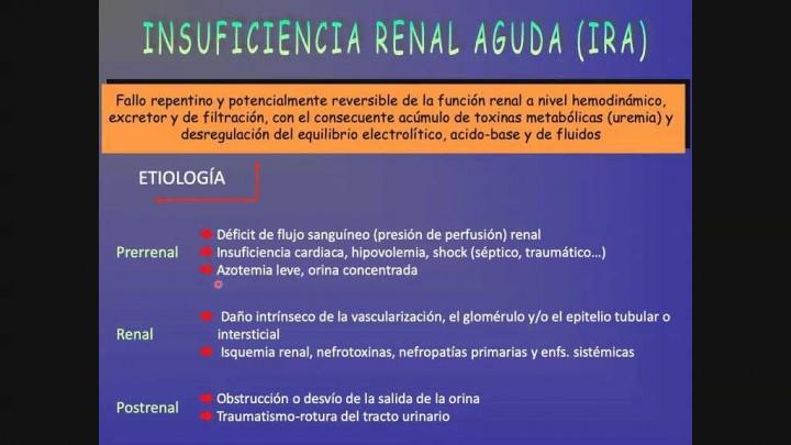 1 - Insuficiencia Renal Aguda (IRA)