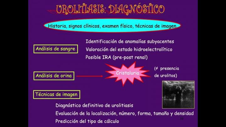 3 - Urolitiasis