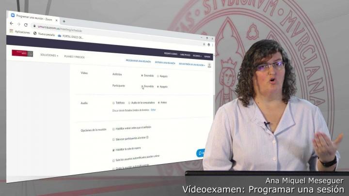 Videoexamen. Programar una reunión