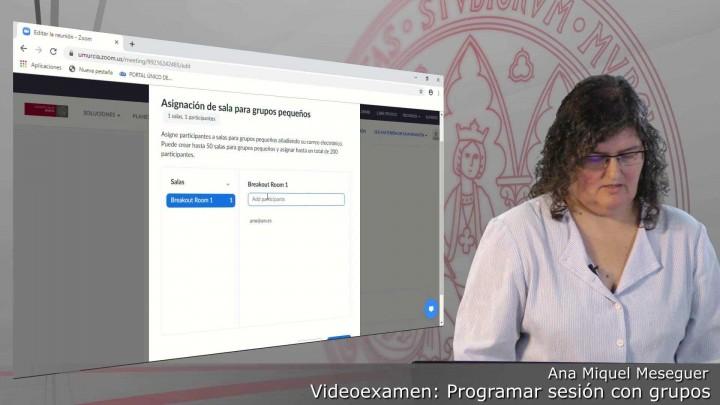 Videoexamen. Programar una reunión con creación de grupos y asignación de participantes