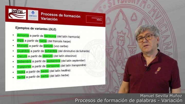13-Procesos de formación de palabras-Variación