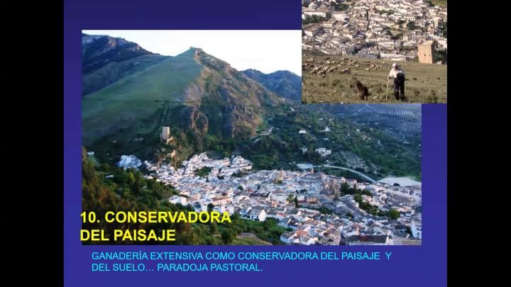'Trashumancia patrimonio, innovación docente, sostenibilidad y biodiversidad'