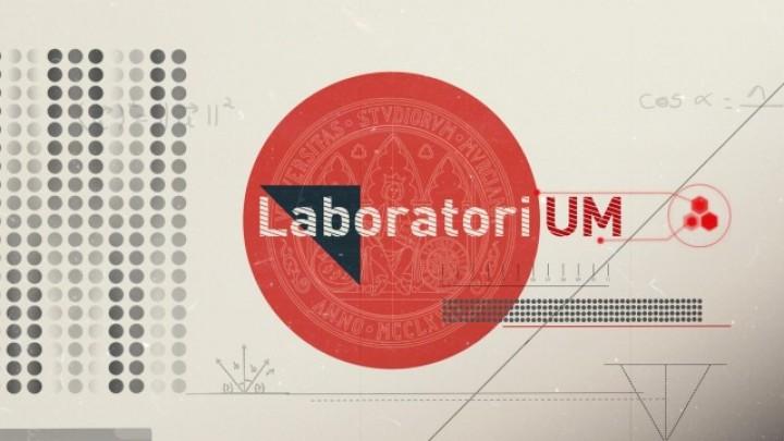 #LaboratoriUM 1