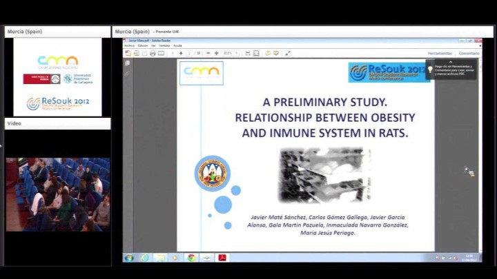 A preliminary study. Relationship between obesity and inmune system in rats