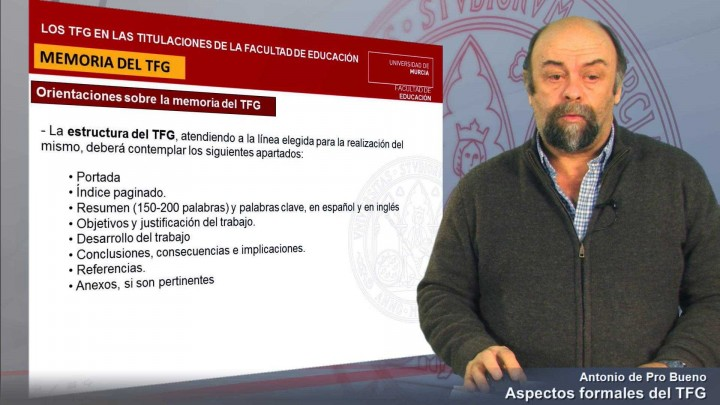 Aspectos Formales TFG 2013/2014