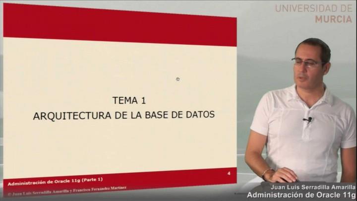 Introducción a la arquitectura de Oracle